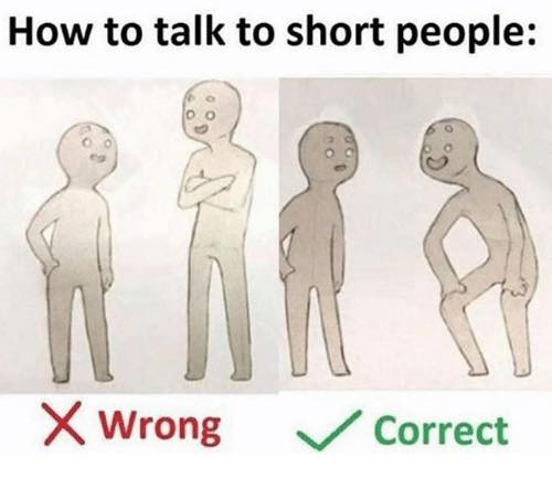 How to talk to short people meme