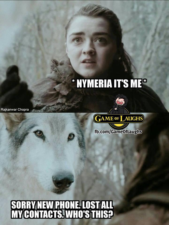 Arya Stark Nymeria meme