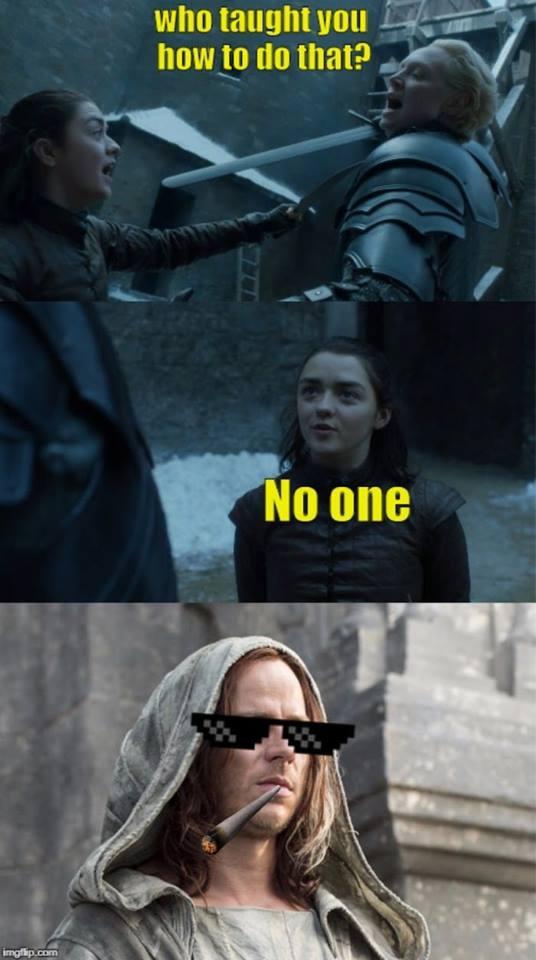Arya Brienne meme