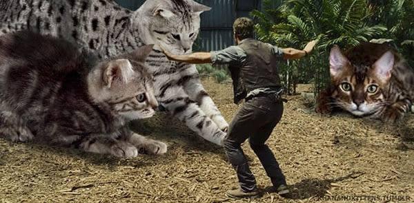 Jurassic Park version Chat