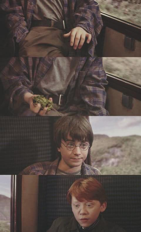 Harry Potter Ron Weed meme