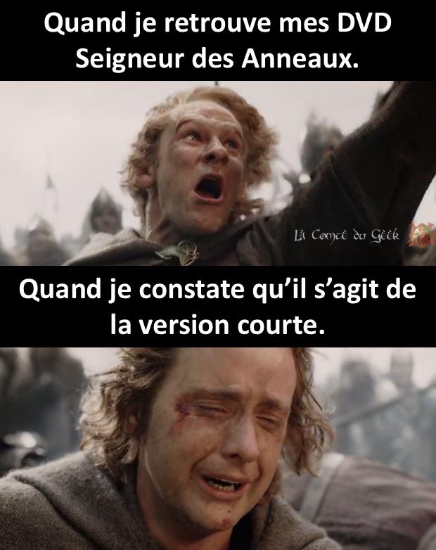Le Seigneur des Anneaux meme