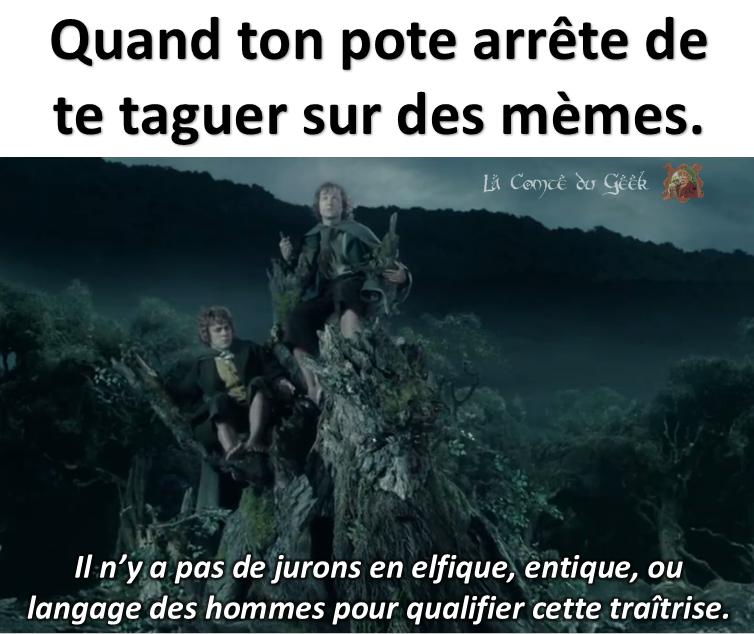 Le Seigneur des Anneaux réplique meme
