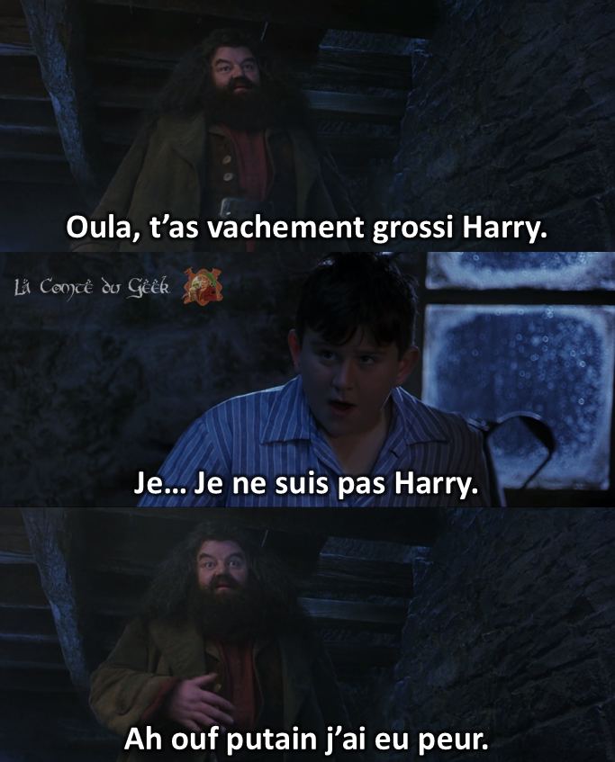 Hagrid Harry Potter meme Dursley