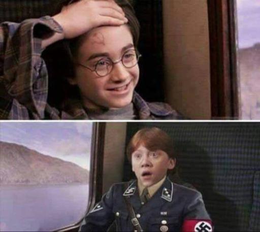 Harry Potter meme nazi communiste