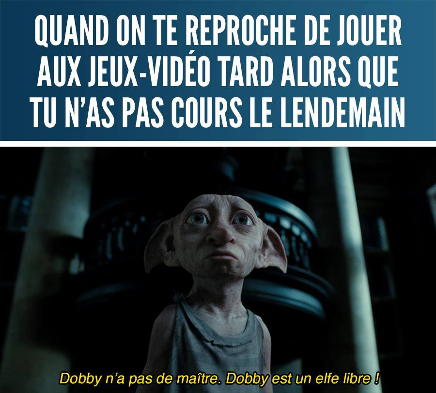 Meme Jeux Vidéo Dobby Harry Potter