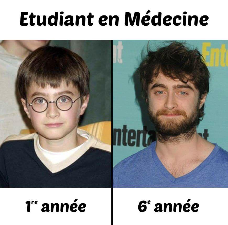 Harry Potter étudiant médecine humour