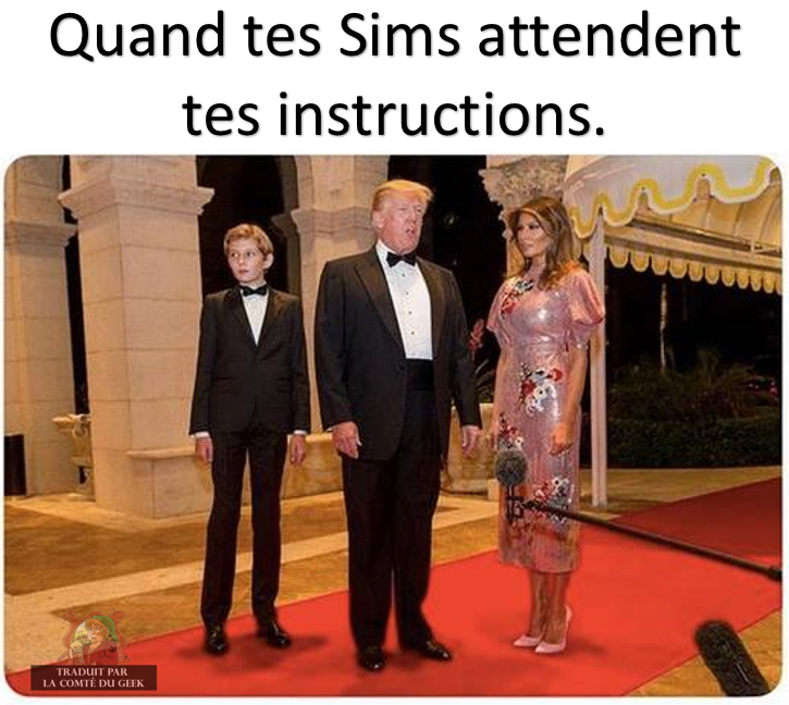 sims instructions humour trump