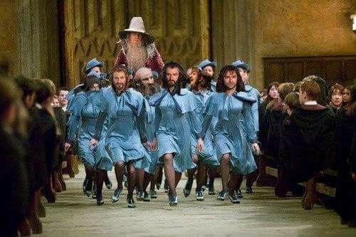 Le Hobbit les nains Harry Potter humour