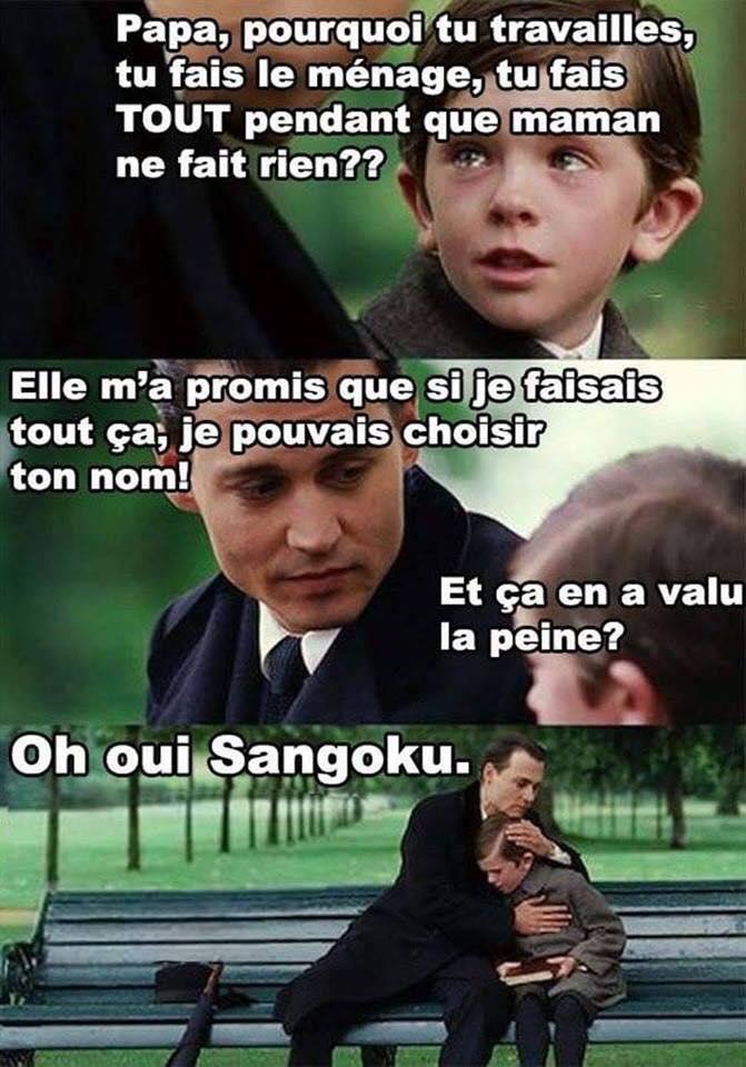 humour sangoku dragonball z meme