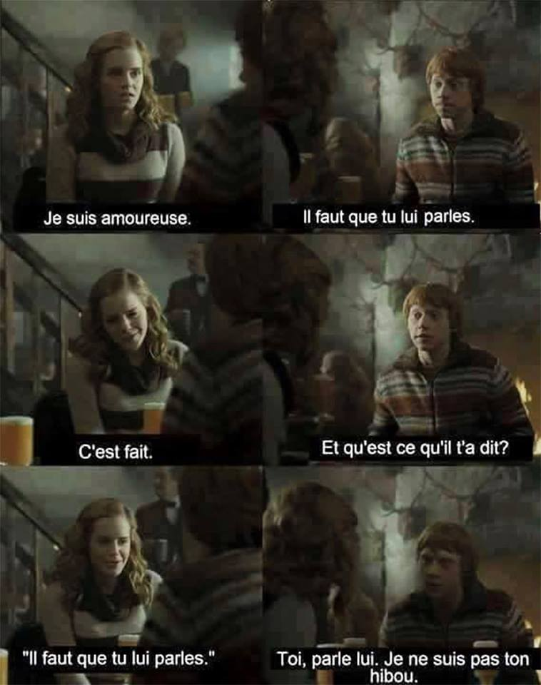 harry potter ron et hermione humour