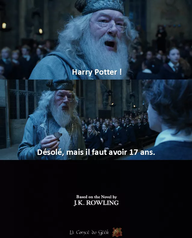 Harry Potter Fin alternative meme humour dumbledore coupe de feu