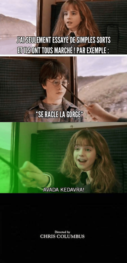 Harry Potter Fin alternative meme humour Hermione avada kedavra
