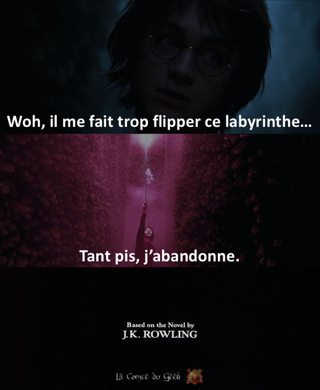 Harry Potter Fin alternative meme humour coupe de feu labyrinthe