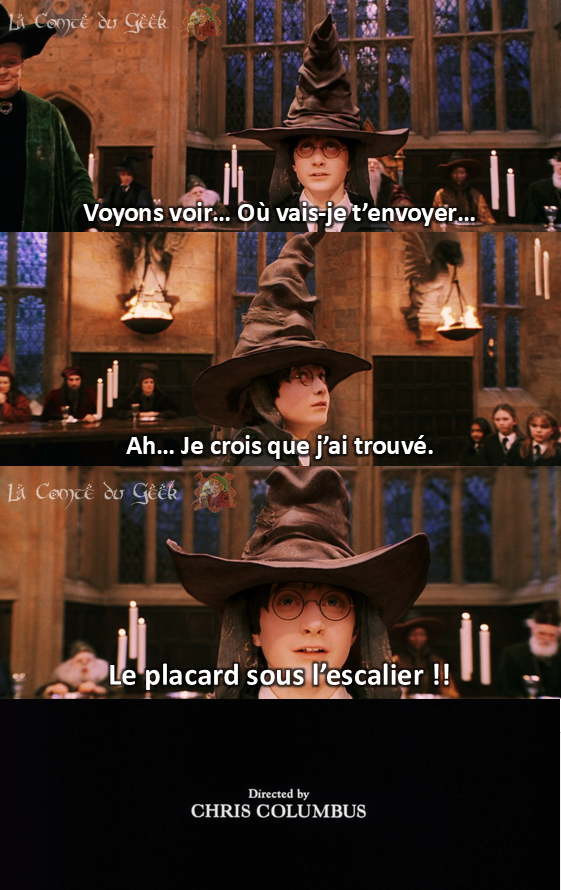 Harry Potter Fin alternative meme humour Choixpeau magique
