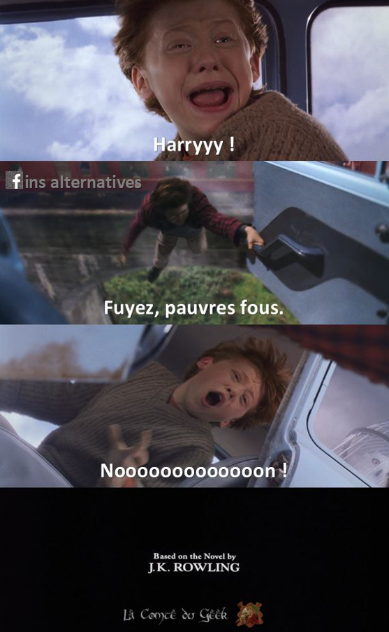 Harry Potter Fin alternative meme humour Gandalf fuyez pauvres fous
