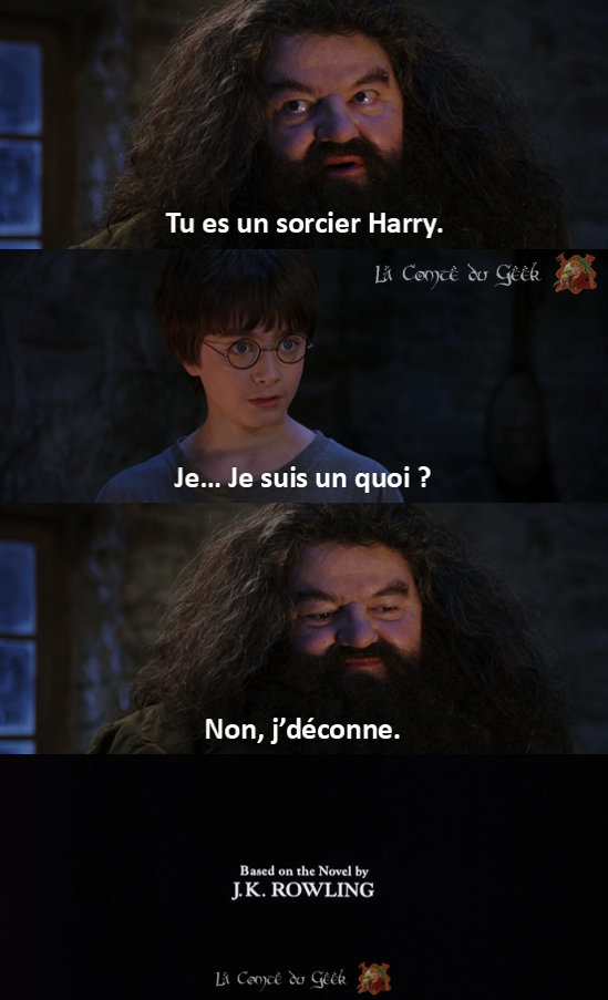 Harry Potter Fin alternative meme humour Hagrid