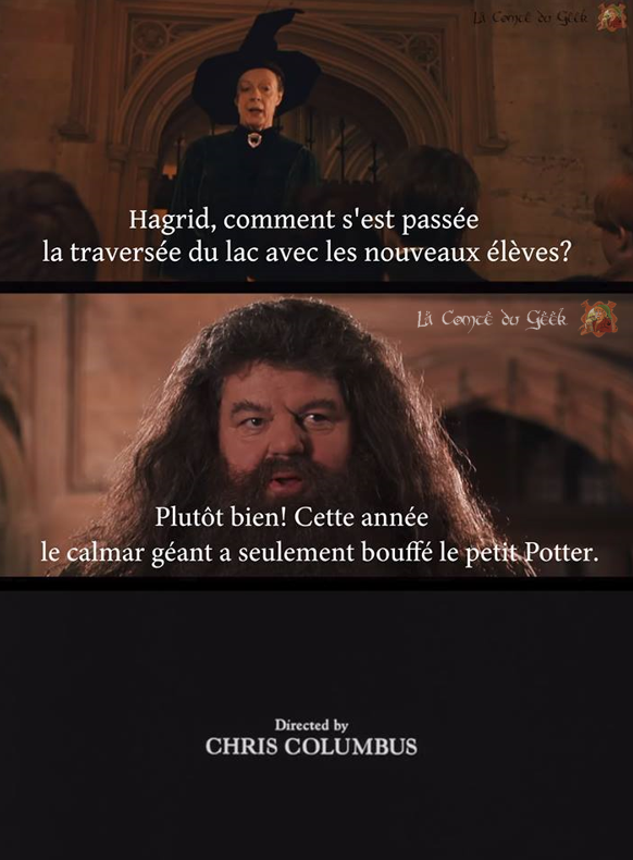 Harry Potter Fin alternative meme humour calmar géant