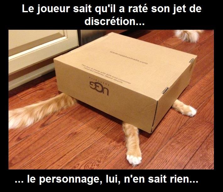 Jeux de rôle chat humour