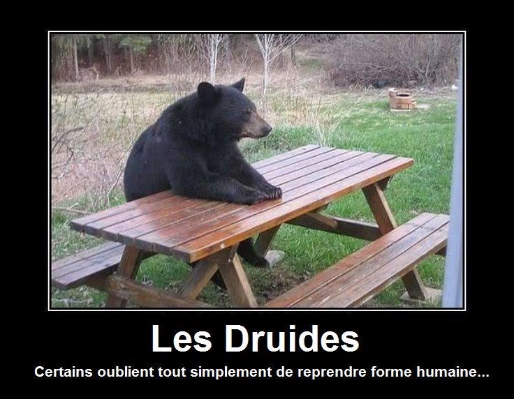 jeux de rôle druides humour meme