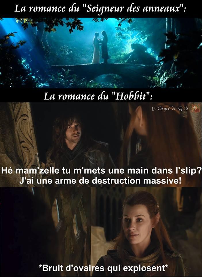 Le Hobbit Seigneur des Anneaux humour beauf