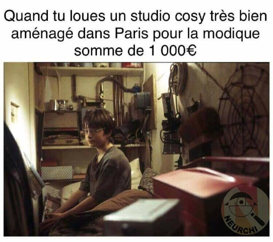Harry Potter meme studio cosy paris