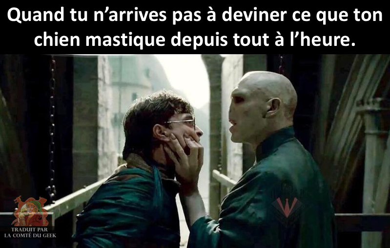 Harry Potter meme voldemort humour