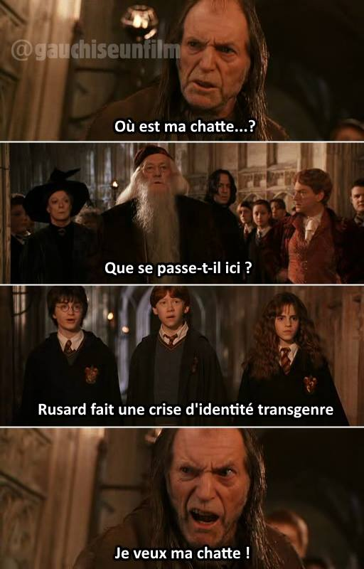 Harry Potter rusard transgenre