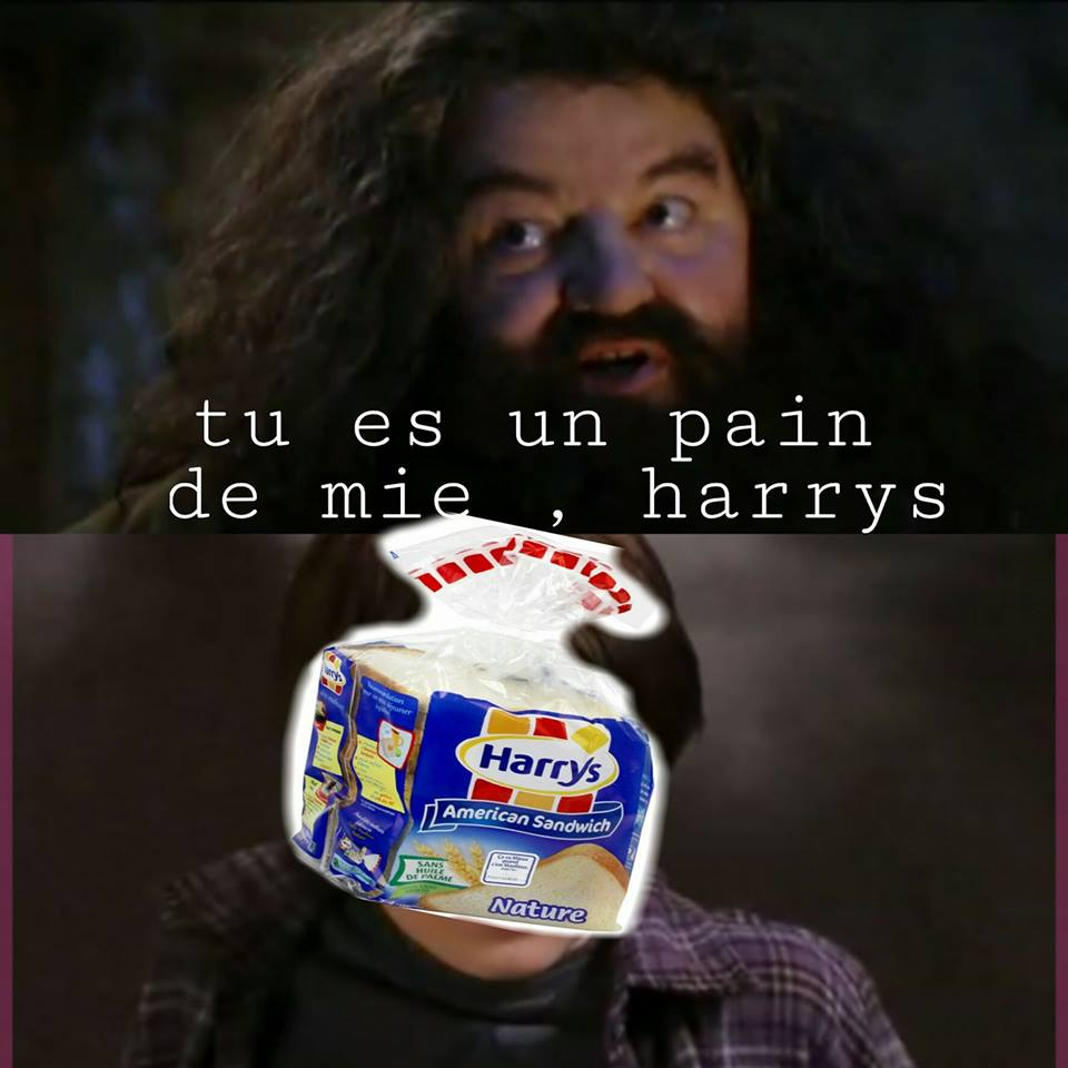 Harry Potter pain de mie harrys