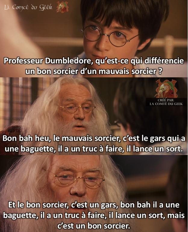 Harry Potter les inconnus le bon et le mauvais sorcier
