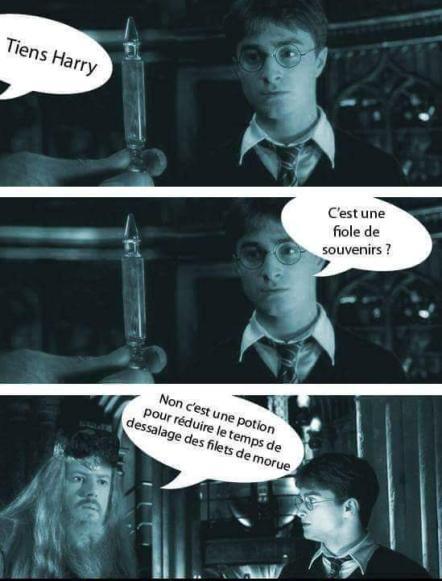 Harry Potter kaamelott meme humour