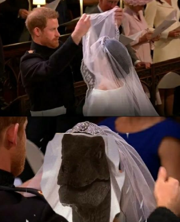 Jurrassic Park humour mariage royal raptor