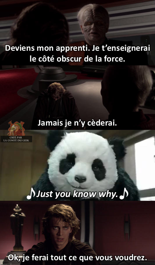 Star Wars meme never say no to panda