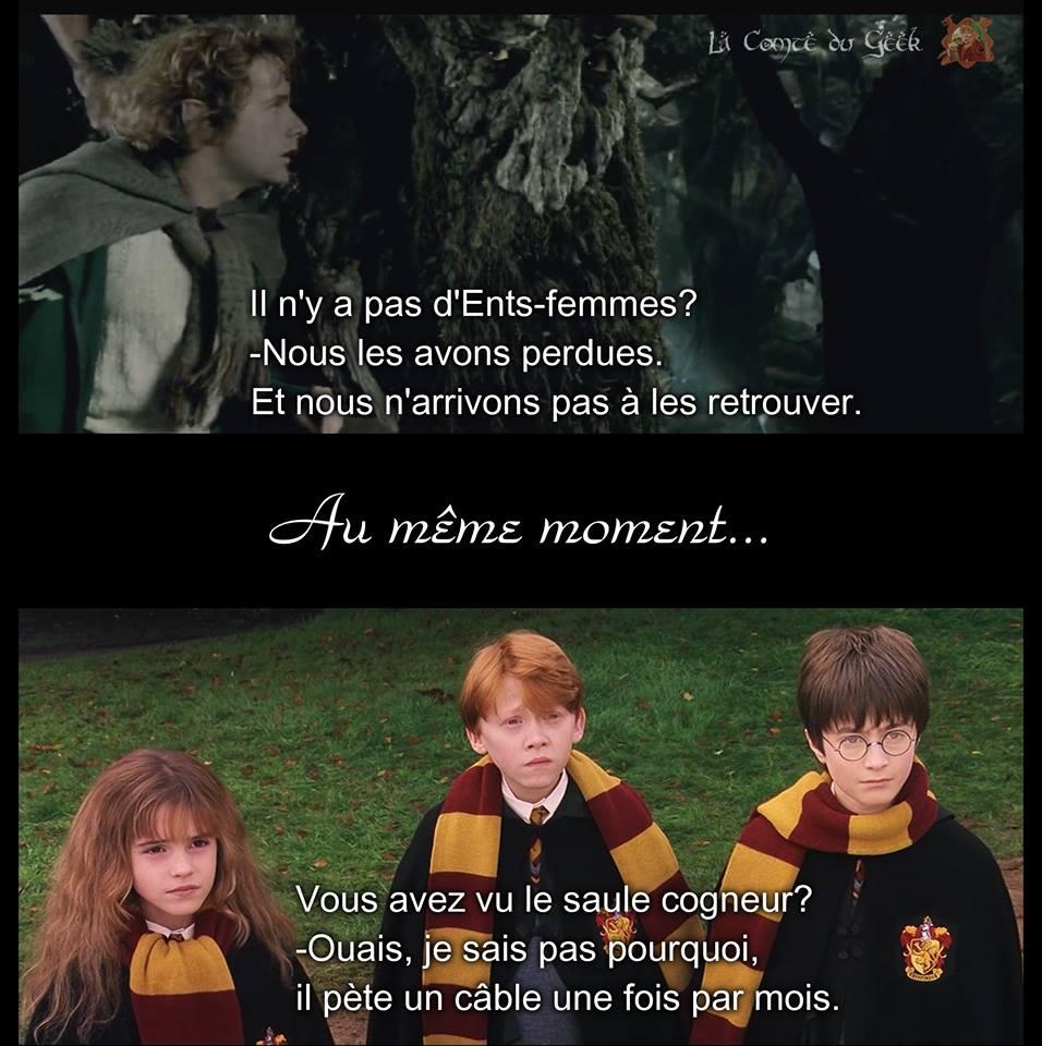 Ents femmes Le Seigneur des Anneaux Saule cogneur Harry Potter meme