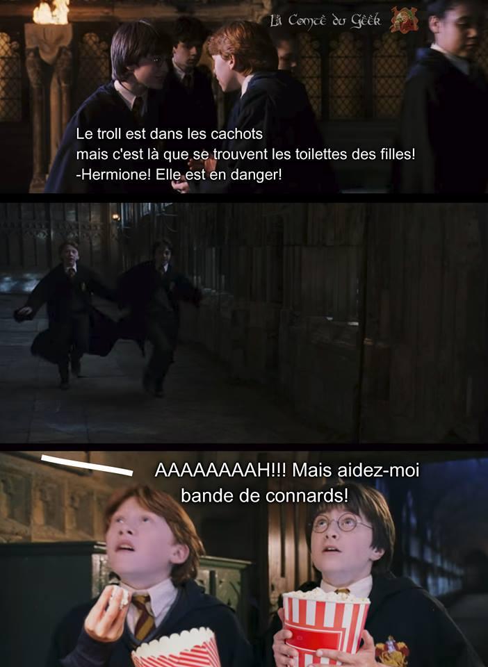 Harry Potter humour troll hermione toilettes des filles