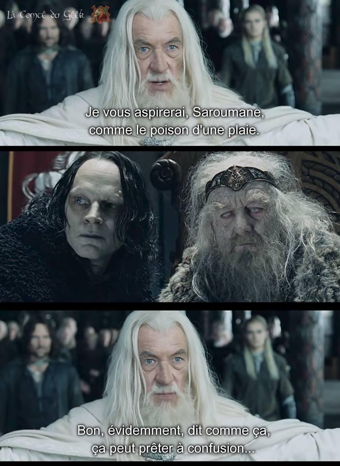 Le Seigneur des Anneaux Gandalf meme je vous aspirerai saruman comme on aspire la poison d'une plaie