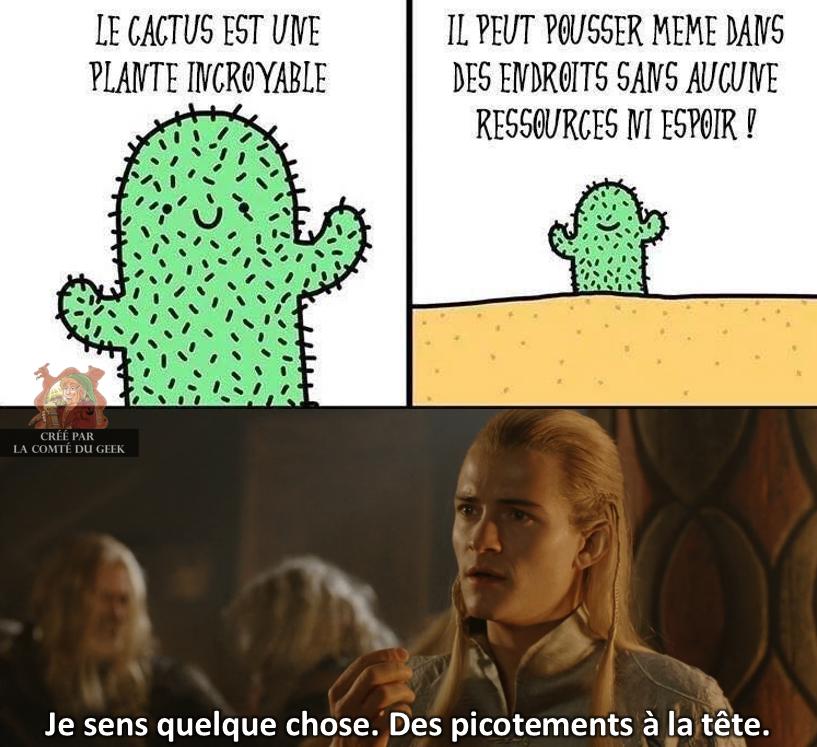 Le Seigneur des Anneaux legolas humour elfe