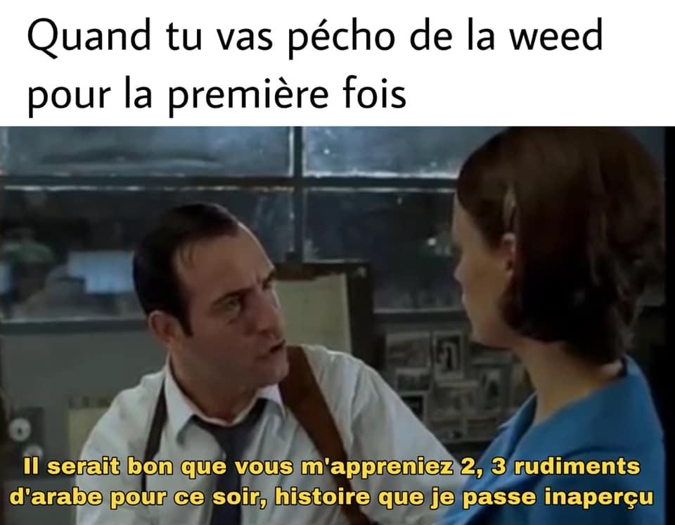 Meme OSS 117 2 3 rudiments d'arabe weed