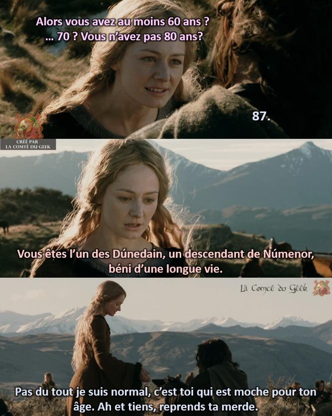 Le Seigneur des Anneaux Aragorn Eowyn clash