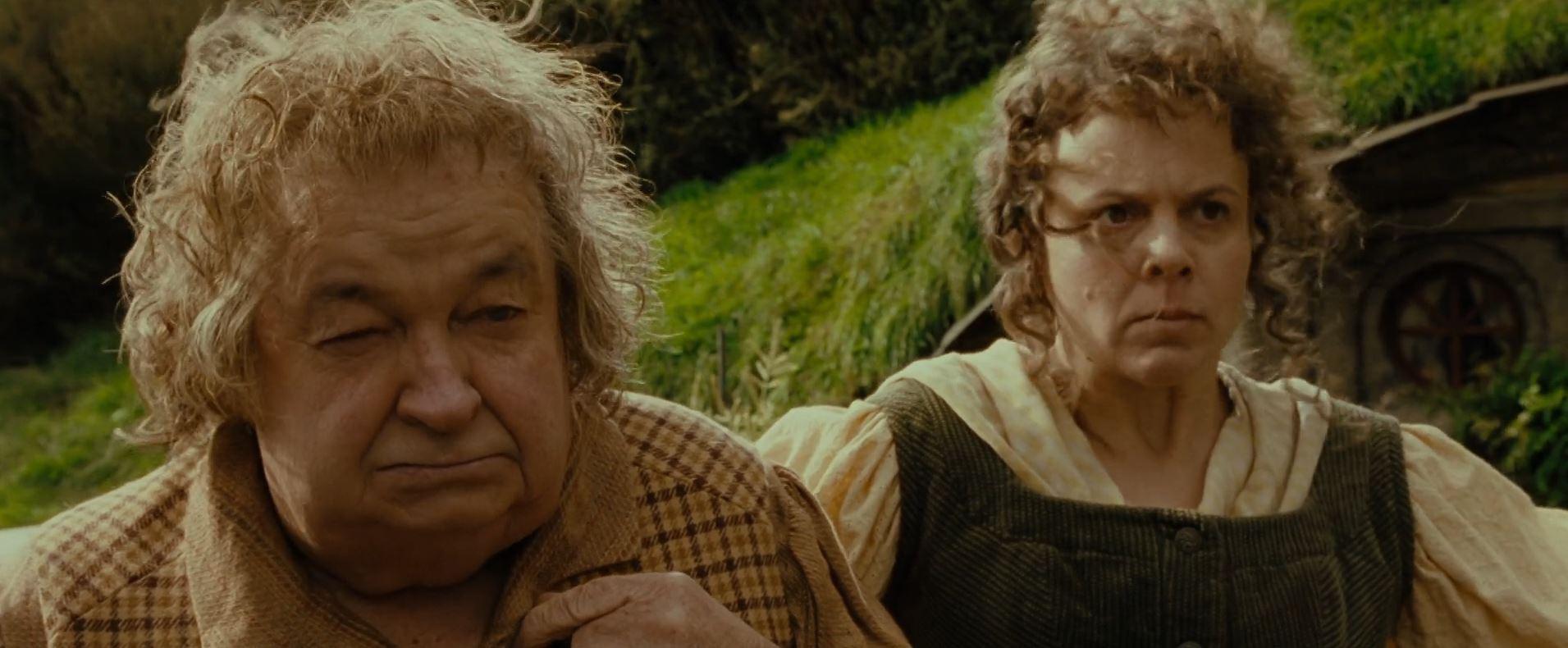 le seigneur des anneaux hobbits couple