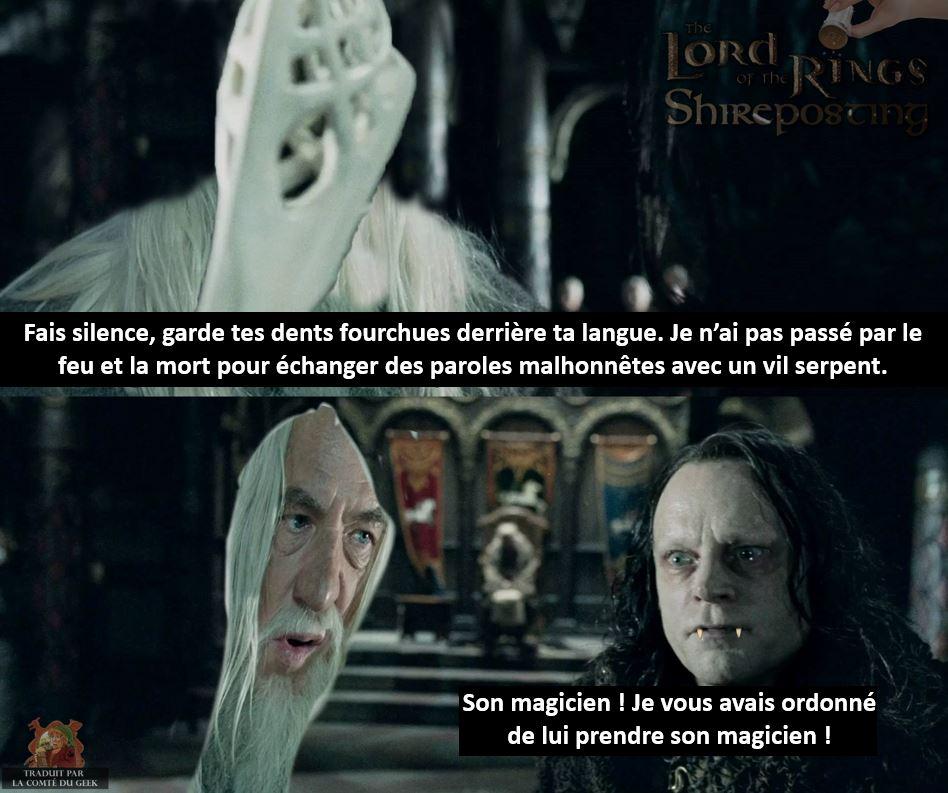 le seigneur des anneaux meme gandalf baton magicien