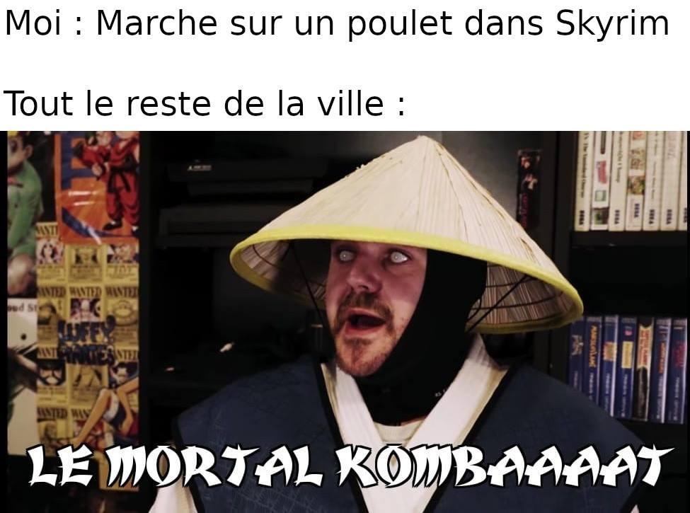 joueur du grenier mortal kombat poulet skyrim meme
