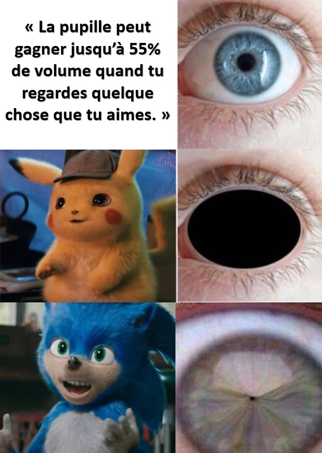 pokemon sonic pupille amour