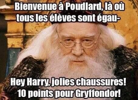 harry potter dumbledore poudlard